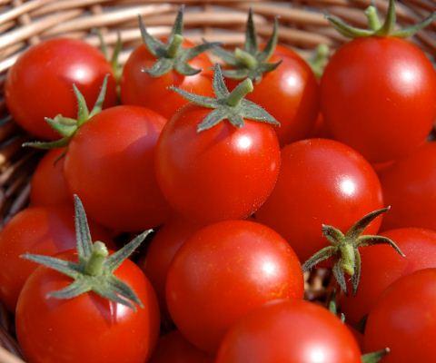 cara menghilangkan bopeng bekas jerawat, masker tomat untuk jerawat