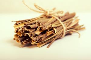 kulit pohon willow obat nyeri sendi