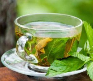 Green Tea Untuk Jerawat Hormonal