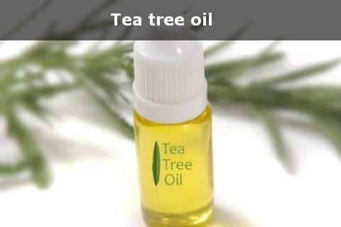 cara menghilangkan komedo putih dengan tea tree oil