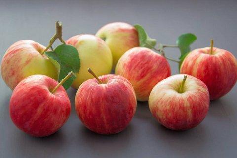 buah makanan diet yang bagus untuk golongan darah o
