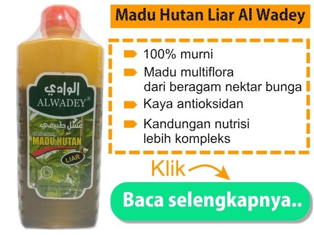 Madu Hutan Liar Al Wadey madu yang bagus untuk masker