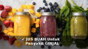 aneka jus buah dan sayur untuk mengobati penyakit ginjal dan kandung kemih secara alami