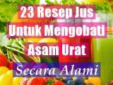 Jus Sayur Dan Buah Untuk Mengobati Asam Urat Secara Alami