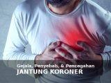 penyakit jantung koroner penyebab gejala cara mencegahnya